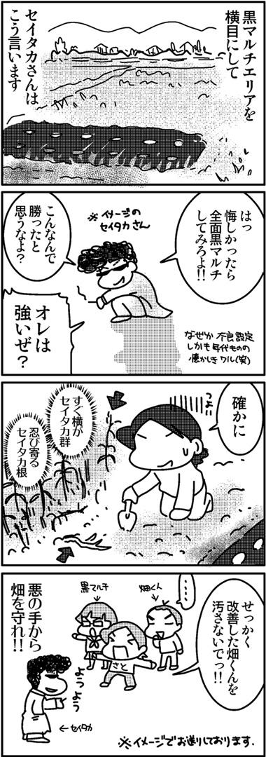 2011芋ほり3.jpg
