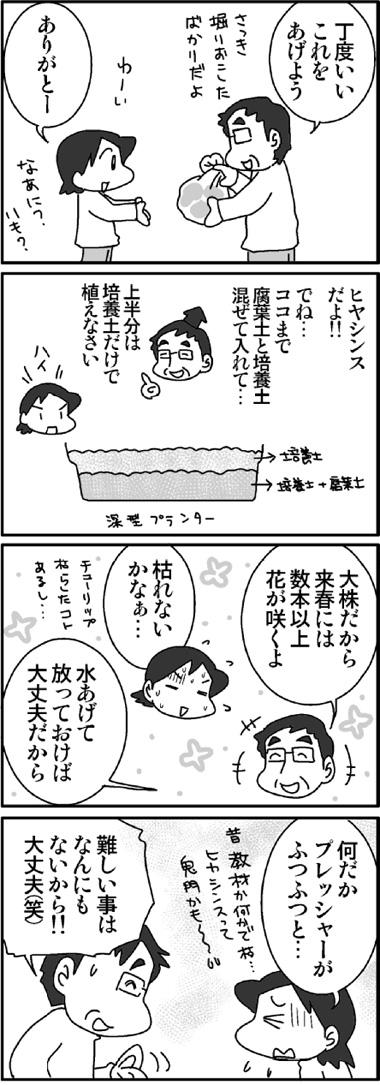 ヒヤシンス1.jpg