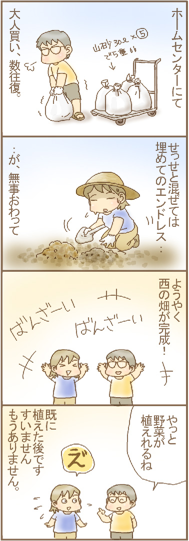 西の畑完成.jpg