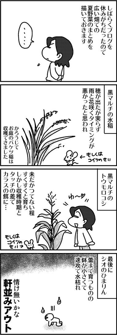 2011夏野菜のまとめ.jpg