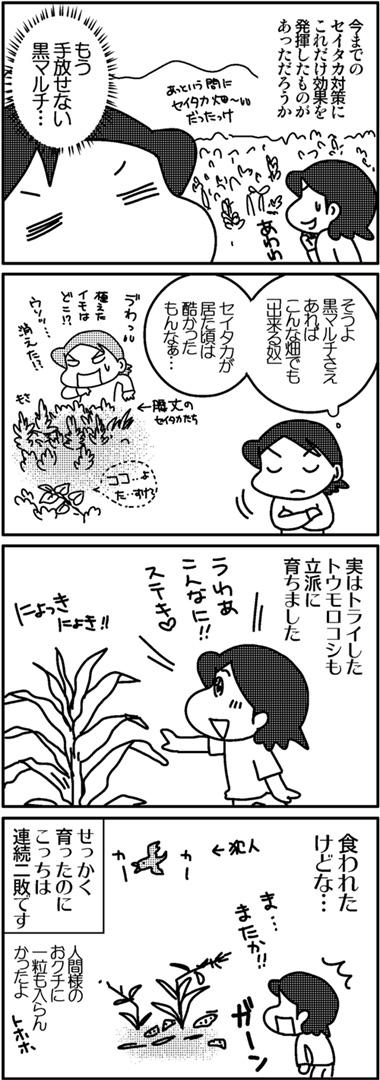 2011芋ほり2.jpg