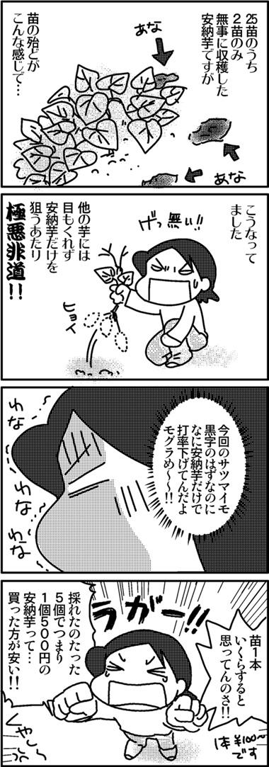 2011芋ほり6.jpg