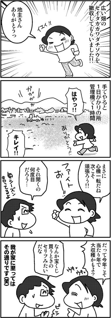セイタカ開墾3.jpg