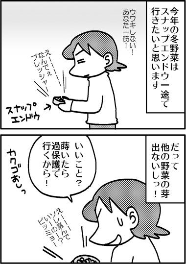 スナップエンドウ3.jpg
