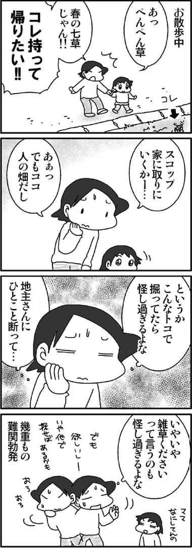 七草発見.jpg
