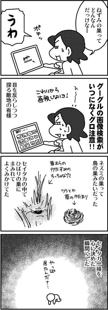 セイタカ開墾1.jpg
