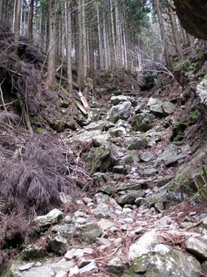 登山道300