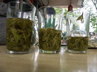 龍井茶比較