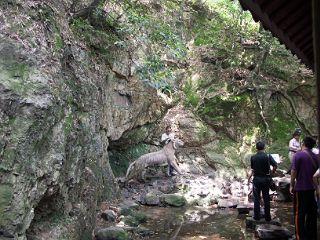 虎ホウ泉の水が染み出る崖