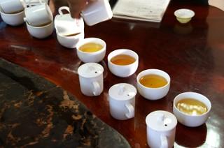 あるきち茶を抽出中