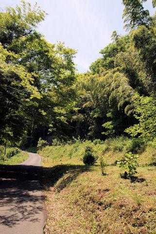 龍源寺間歩への道2