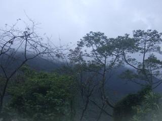 合歓山への道