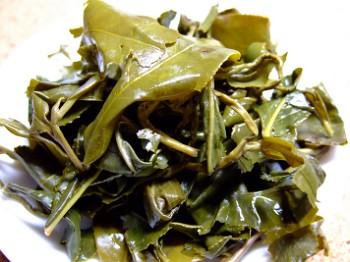 福寿山抽出後茶葉