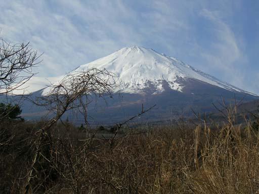 元旦の富士山.jpg