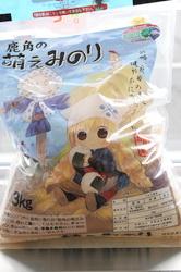 akibaF1107_k.jpg