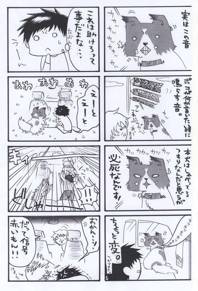 mpoko1214-3