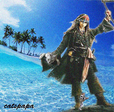 海賊catspapa