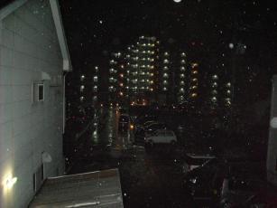 2月20日まとまった雨
