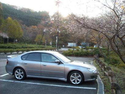 子福桜とB4