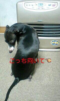 2010-03-01 21:33:30
