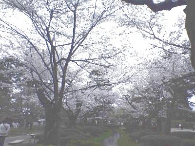 kenroku2