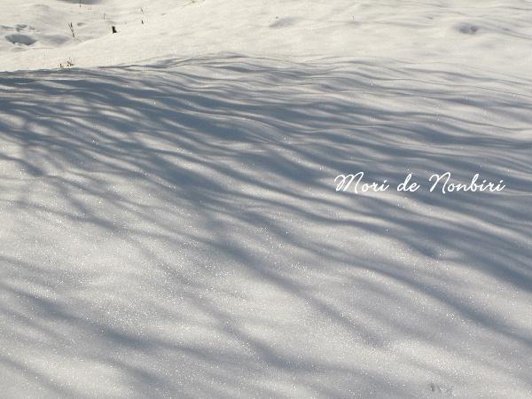"""""""雪の上にのびる影はどうして青いのだろう。"""""""
