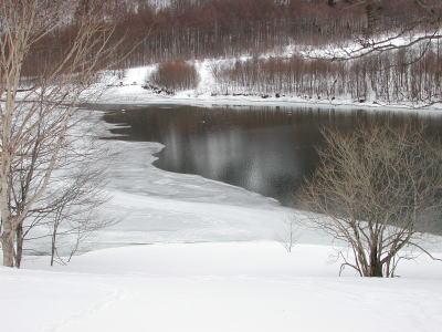 凍る大正池
