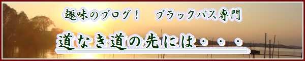 道なきブログバナー.jpg