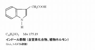 インドール酢酸(IAA)
