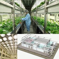 閉鎖型植物工場