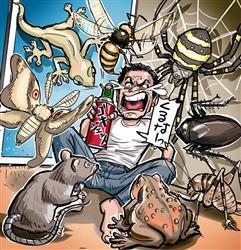 虫との闘い