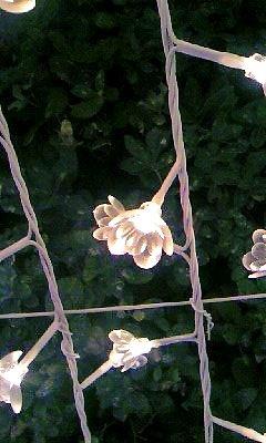 お花の電球