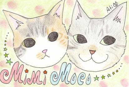 Mimi&Moco