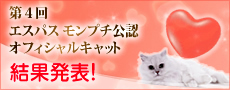 bnr_officialcat2009_kekka.jpg