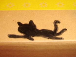 箱に黒猫♪