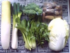 2009自家製野菜・福岡へ