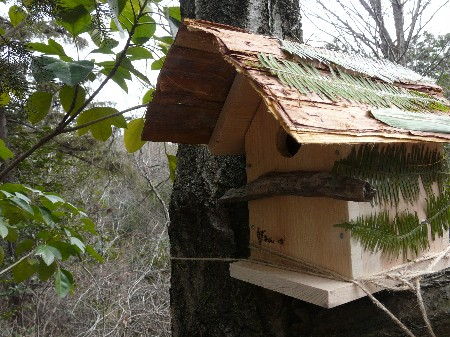 巣箱作り H.20.3.2 019.jpg