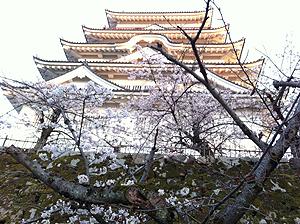 福山城お花見1