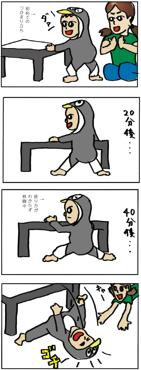 iri_20111110