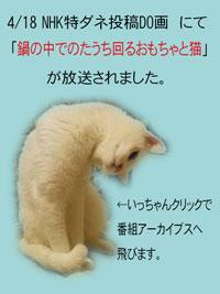 20100420001.jpg