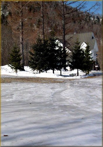 スケートリンク化した庭