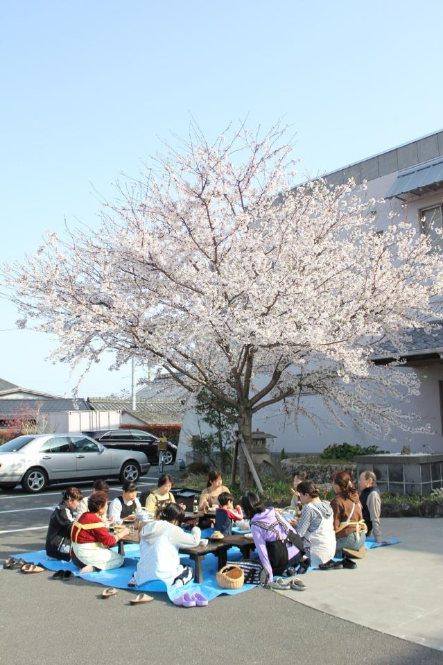 2011 花見.jpg