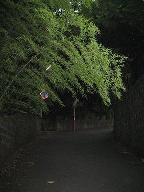 kowaisaka.jpg
