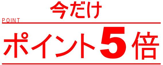 point5.jpg