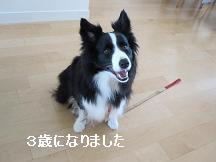 3歳バースデー自宅.JPG