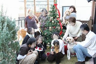 クリスマス会集合写真.jpg