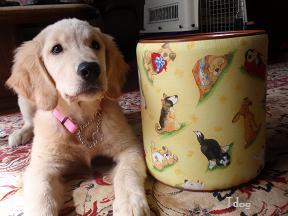 犬ゴミ箱2.jpg