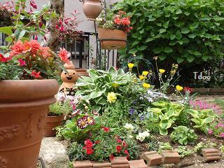 2011夏の花へ 001.jpg