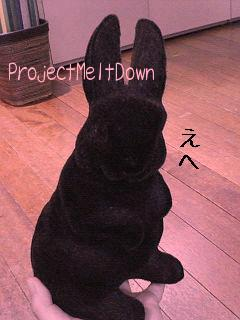 ProjectMeltDown2007S