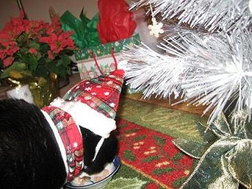Ekkun&ChristmasSnack-2006